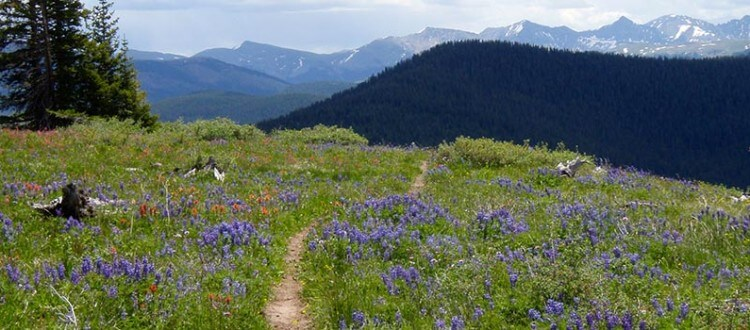 Tips to Respect the Trails